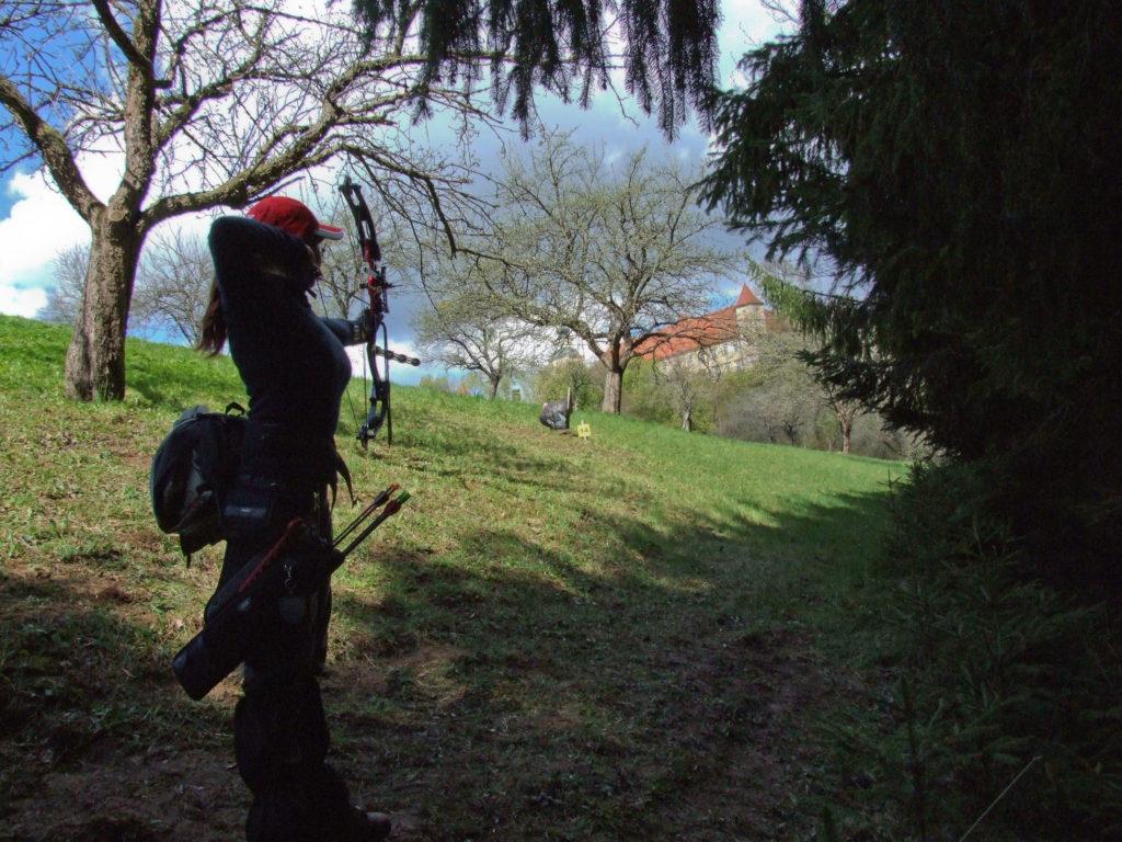 3d_archery_ec_voral_2008