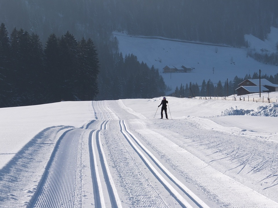 cross-country-skiing-113018_960_720